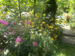 The entrance arch to the back Perennial Garden...
